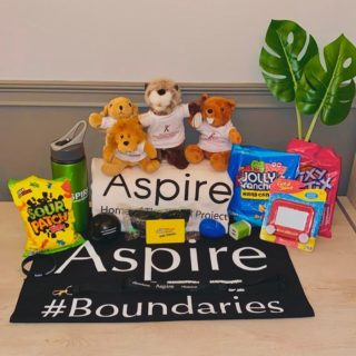 ASPIRE'S FALL GIVEAWAY!!! Here at Aspire, we love our students! Here's what you'll win: a $25 Subway gift card, an Etch A Sketch, a bag of Jolly Ranchers (our fave candy), a bag of Pixy Sticks, and a bag of Sour Patch Kids. Also some Aspire merch to include a metal drink bottle, an XL t-shirt, a stress ball, a charger block, silly putty, sunglasses, a bandana, lanyards, and bracelet. You'll also receive our REAL Essentials Personality Profile test with the four personalities in stuffed animal form: lion, golden retriever, beaver, and otter! Find out what personality fits you! And, you can have your friends and family take it too! There are a few rules: • Make sure you're following @aspire352 • Tag 2 friends in the comments • Tell us your favorite thing about the fall season! The winner will be announced October 23, 2020 at 5pm! Remember to shake it up! 💚